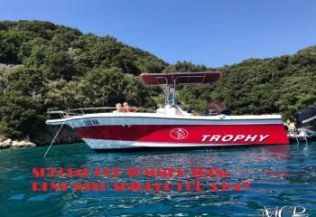 Bayliner 2503 Trophy - 242 KK