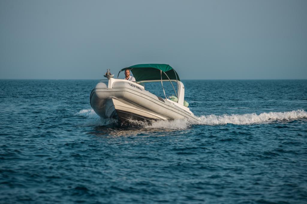 Shark 23 - 1201 ML